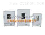 DGG-9420BD立式电热鼓风干燥箱/电热恒温鼓风干燥箱