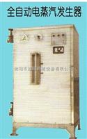 全自动电蒸汽发生器