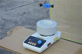 500ml ZNHW型智能数显电热套