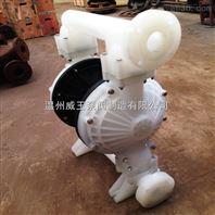 生产厂家供应耐腐蚀气动隔膜泵  强酸碱气动隔膜泵