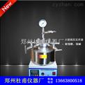 TGYF-C-50ml-定制微型高壓反應釜 200ml不銹鋼微型釜 微型磁力高壓反應釜