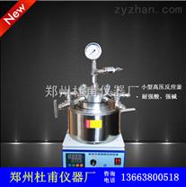 微型磁力搅拌高压反应釜'实验室小型高压反应釜\水热合成反应釜