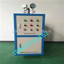 山东24kw全自动电热蒸汽发生器