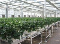 植物营养液成套设备直销