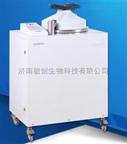 LMQ.C-80E全自動高壓蒸汽滅菌鍋