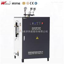 LDR承壓電熱水鍋爐