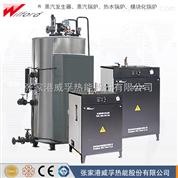 医用电蒸汽发生器/蒸汽锅炉产品简介