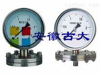 专业生产古大GDYZ 指针型压力表