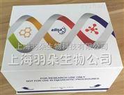 人幽门螺杆菌IgM(H.Pylori IgM)ELISA试剂盒