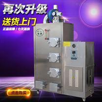 旭恩微型100KG生物質顆粒蒸汽鍋爐正品保證