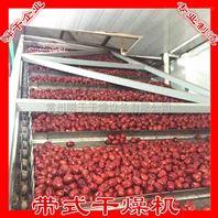 红枣脱水用带式干燥机