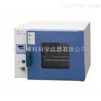 上海一恒烘箱 DHG-9030A数显式鼓风干燥箱